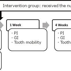 Research on dental plaque